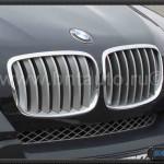 Решетка радиатора в капот BMW X6 E71, X5 E70 06 -Titan