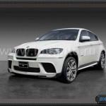 BMW X6 E71 Performance 1